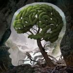 Igor Morski: Brain 1